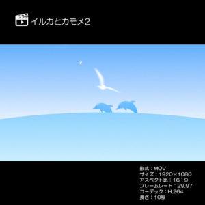 イルカとカモメ2