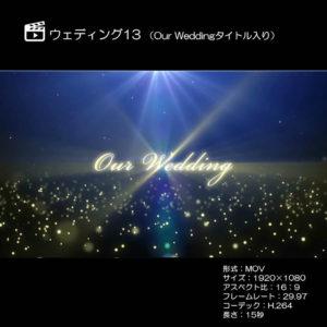 ウェディング13(Our Weddingタイトル入り)