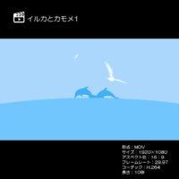 イルカとカモメ1